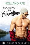 Yearning in Yellowstone