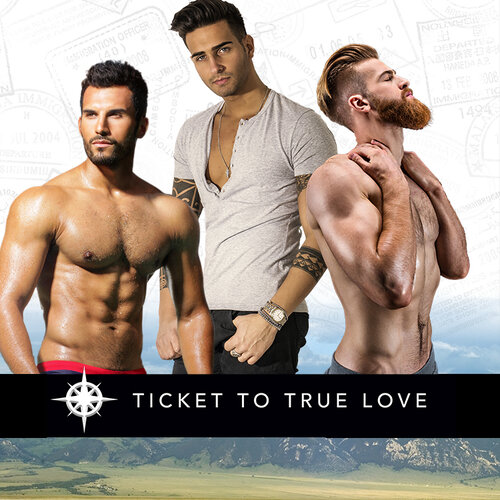 Ticket to True Love authors now have a FAN PAGE