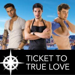 Ticket to True Love Series